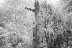 Totem Poles in Infrared