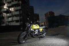 Moto-Guzzi V7 750 Cafe Classic 2010 - 17