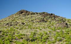 Petroglyph National Monument Volcanos section DSCN9465-edit