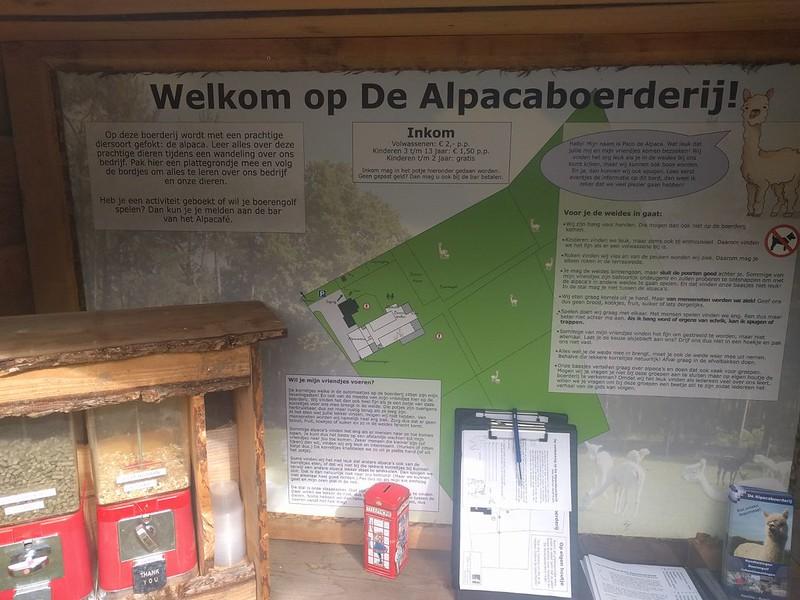 4e575577-715d-4332-b6ac-3538f576c5ca visitando la tierra de las alpacas - 34531300273 84538f4ed0 c - Visitando la tierra de las alpacas