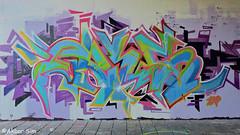 Den Haag Graffiti FRIS