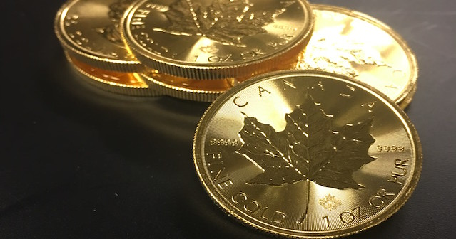 The Classic Design of the Gold Maple Leaf Coin is Virtually Unchanged Since its Introduction.