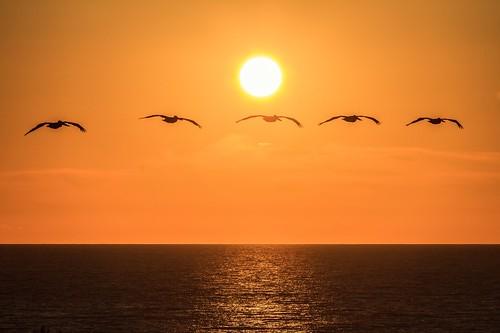 North county San Diego sunset
