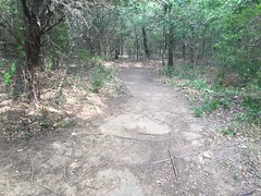 Lakeview Trail 2