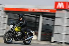 Moto-Guzzi V7 750 Cafe Classic 2010 - 0