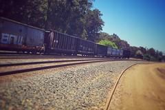 train [Day 3088]