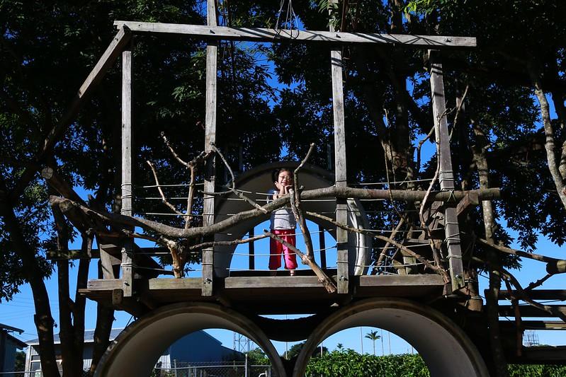 寶妹去樹屋探險