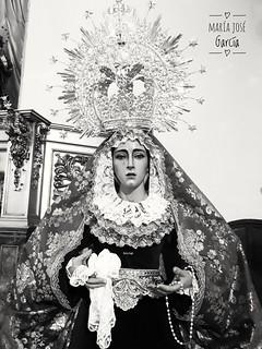 Y así de bonita está mi Rosita Alcalaina.... Nuestra Señora de la Salud y Perpetuo Socorro Salvador Madroñal Valle #BuenasTardes ??