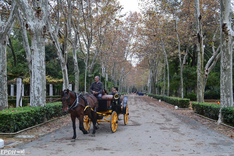 calesas en el Parque María Luisa