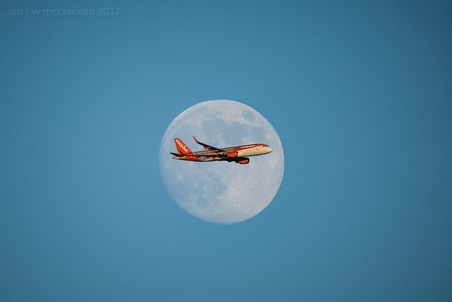 Fly Me To The, Nikon D750, Sigma 150-600mm F5-6.3 DG OS HSM | C