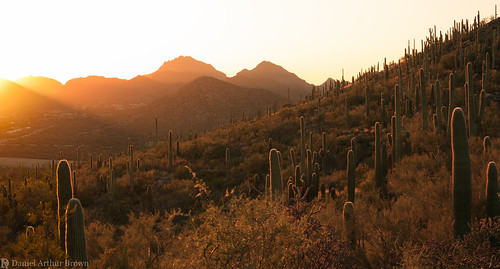 az americansouthwest arizona february menlopark sentinelpeakpark sonorandesert southwest southwesternunitedstates tucson desert hiking landscape mountains nature sunset