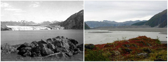 Sự thay đổi cảnh quan trong vòng 100 năm trên toàn thế giới - egolandscape 02