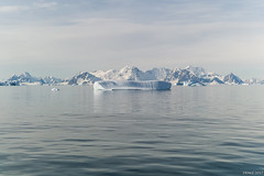 Icebergs in Marguerite Bay