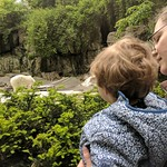 At the Bronx Zoo
