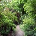 Small photo of A Walk In Abbey House Gardens, Malmesbury - Wiltshire.