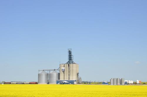 Prairie silos