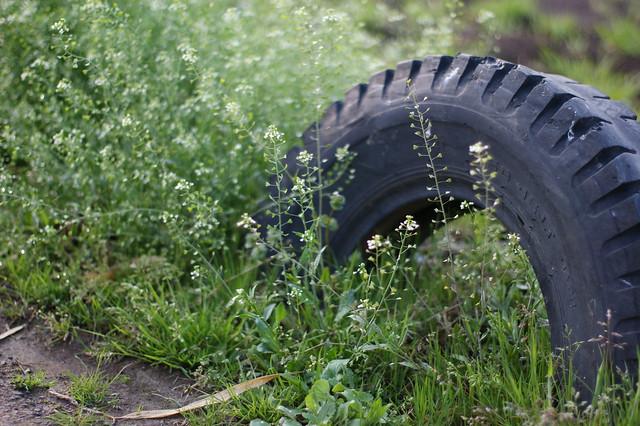 Photo:田舎ってこういうタイヤ半分埋まってるのあるよね By MiNOL__000