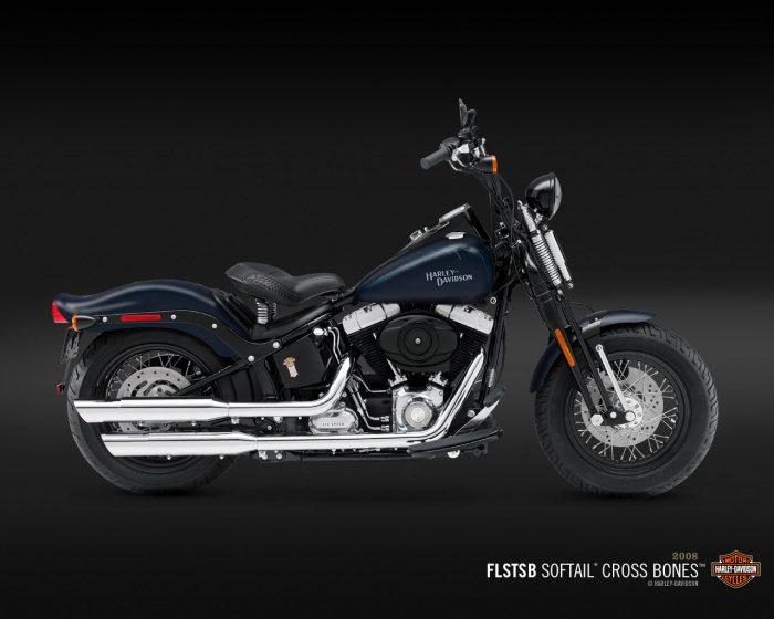 Harley-Davidson FLSTSB 1584 SOFTAIL CROSS BONES 2008 - 23