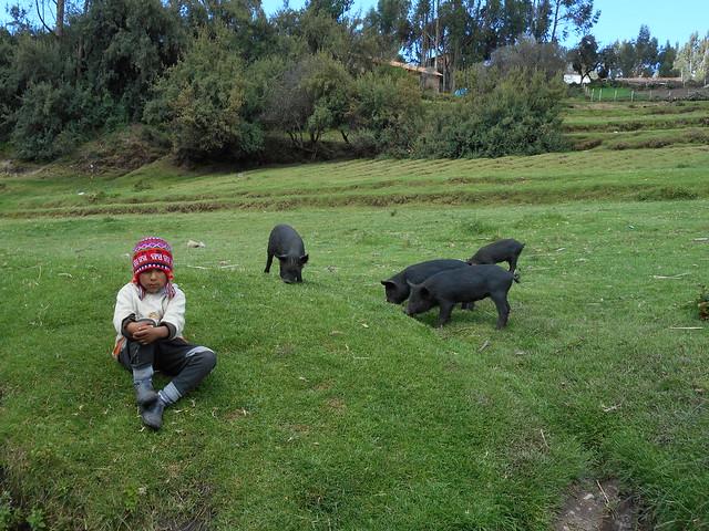 15a Peru Sacred Valley 13, Nikon COOLPIX S3600