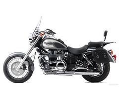 Triumph 800 BONNEVILLE AMERICA 2001 - 33