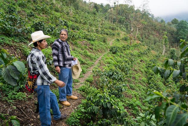 Edwin Martinez Sr. and Mario Sales Perez