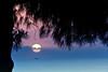 Sunset by pinomangione