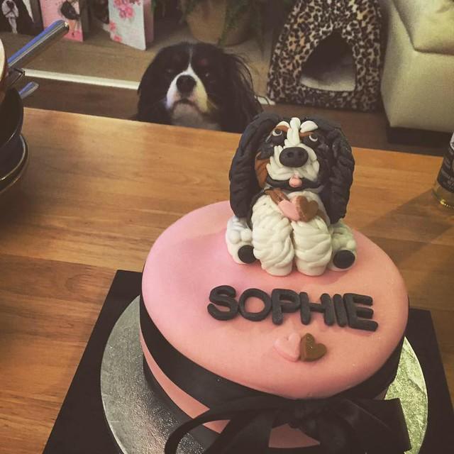 Cake by Abbi Lou's Cupcakes