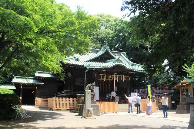 yoyogihachimangu25
