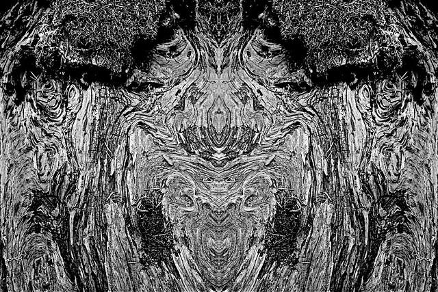wood spirits 2xadj