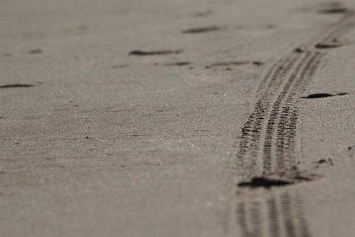 La huella - The tread