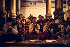 Praying at Shwedagon Pagoda