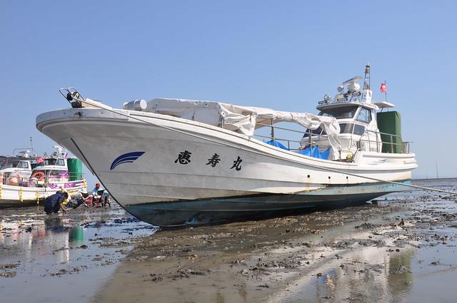 川副町観光潮干狩り( Offshore Clam Digging)