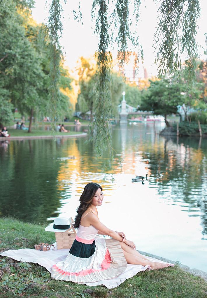 things to do in boston public garden common picnic