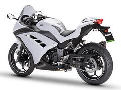 Kawasaki Ninja 300 Performance 2015 - 3
