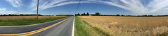 Willard Road Panorama