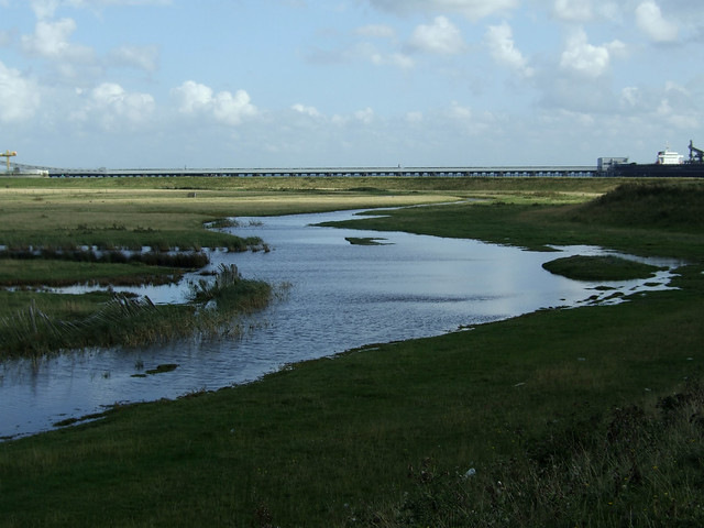 Marshes near Hoo St Werburgh