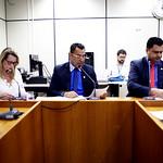 ter, 13/06/2017 - 09:18 - 17ª Reunião Ordinária da Comissão de Legislação e Justiça.Foto: Rafa Aguiar