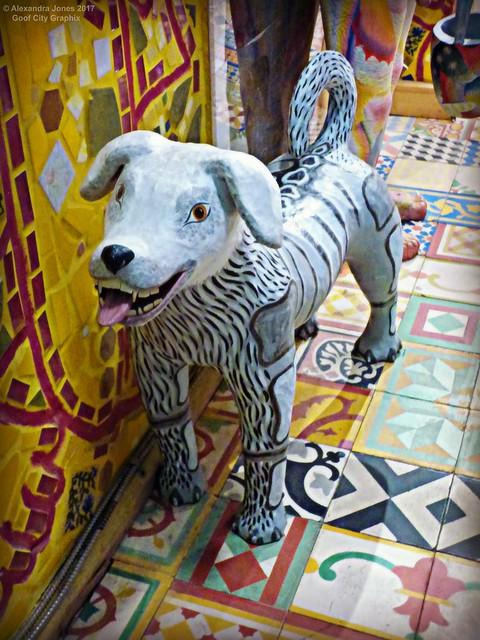 A Lively Little Doggie, Panasonic DMC-FZ70