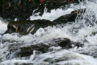 Chester Creek, Duluth