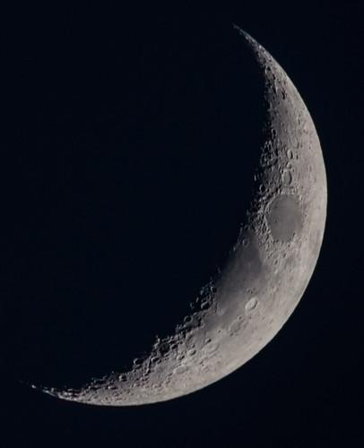 Crescent Moon - June 27, 2017 DSC_9076
