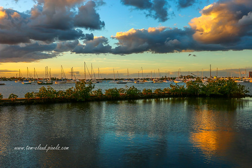 boats sailboatssailboats water riversouthfork stlucieriver nature mothernature sunset clouds cloudy weather reflection reflect shepardspark stuart florida usa