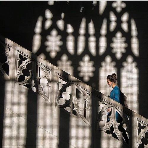 The age old question: Duke or #Hogwarts? #pictureduke #harrypotter20 #gothicwonderland // PC: @dukephotoaday