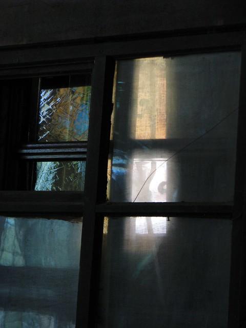Through the glass darkly, Canon POWERSHOT S5 IS