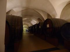 Patriarche Beaune - wine cellars