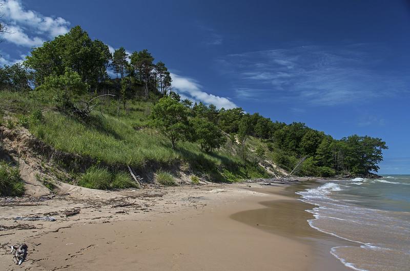 Lush Dunes