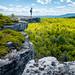 Menewaska State Park Preserve - DSCF6938 by Wandy Sosa