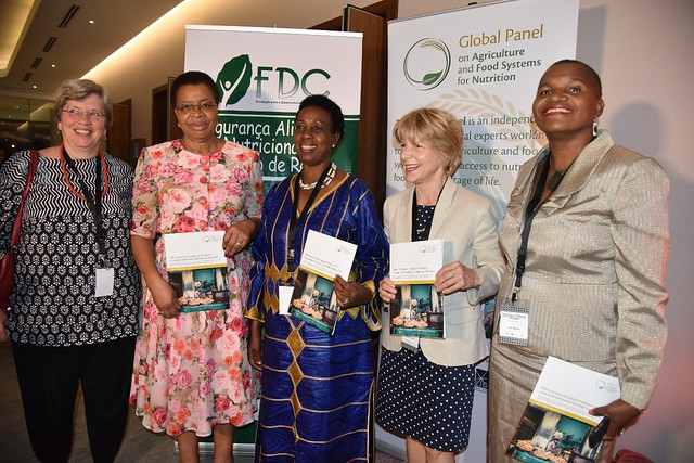 High-Level events: Delivering high-quality diets in Mozambique