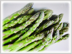 Asparagus officinalis (Asparagus, Garden Asparagus) contains numerous medicinal properties, 13 July 2017
