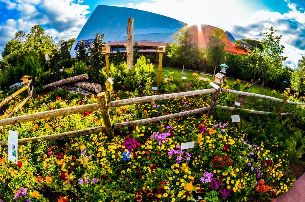 Imagination Pavilion sun