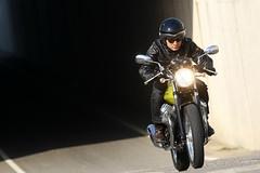 Moto-Guzzi V7 750 Cafe Classic 2010 - 40